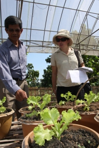 Discussions about the lettuce trials with Dr. Buon Suy. March 2010. Photo by Alan Stuart-Watt.